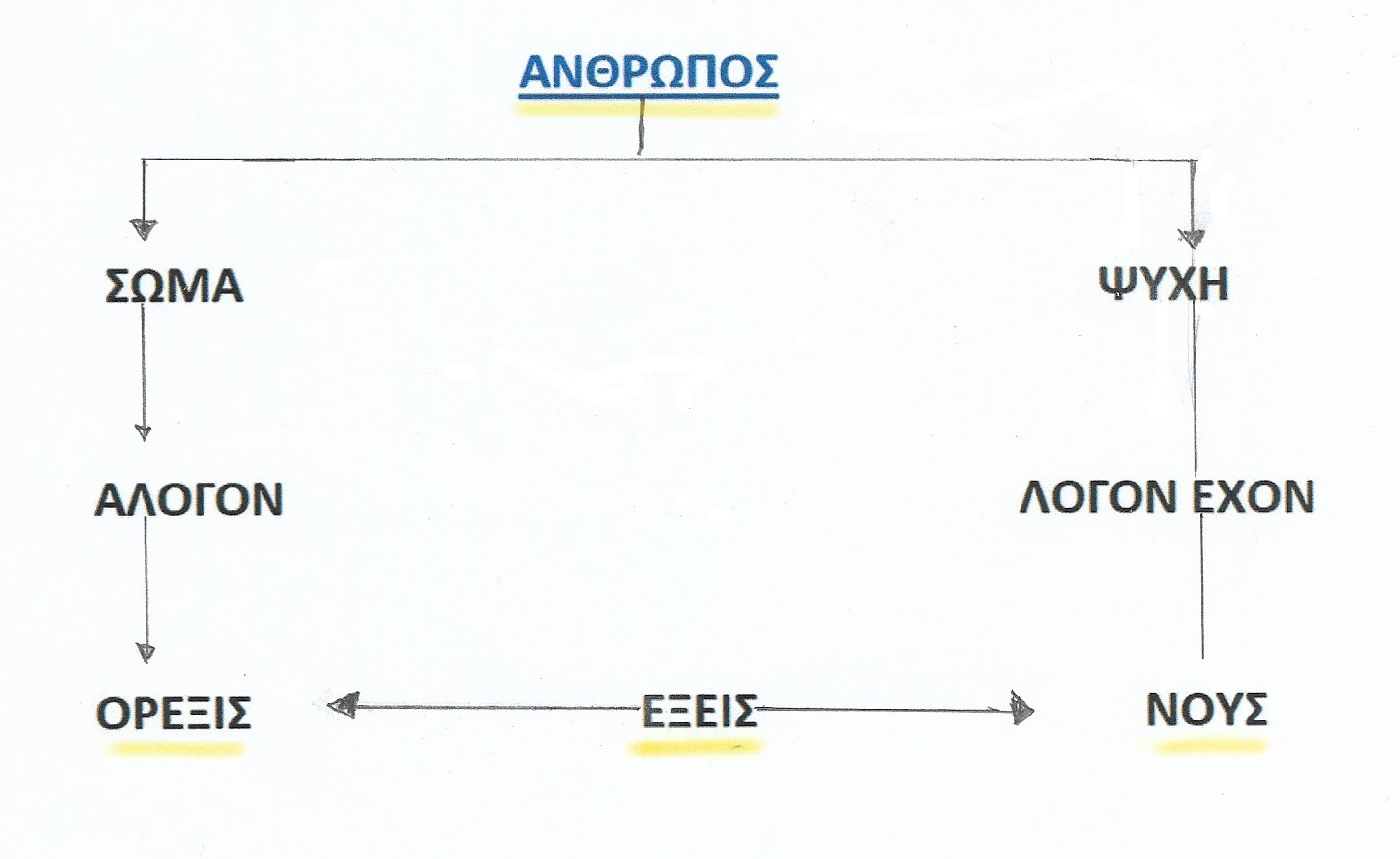InkedΣάρωση_20191203 (2)_LI